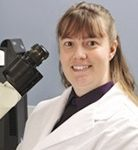 Lacey McNally, PhD, Professor, University of Oklahoma College Biomedical Engineering; Co-Leader, Stephenson Cancer Center Experimental Medicine and Developmental Therapeutics (EMDT) Program